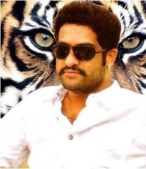 jr ntr dammu