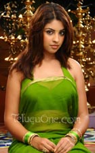 Richa gangopadhyay iddarammayilatho, allu arjun richa gangopadhyay, iddarammayilatho movie, allu arjun puri jagannath new movie