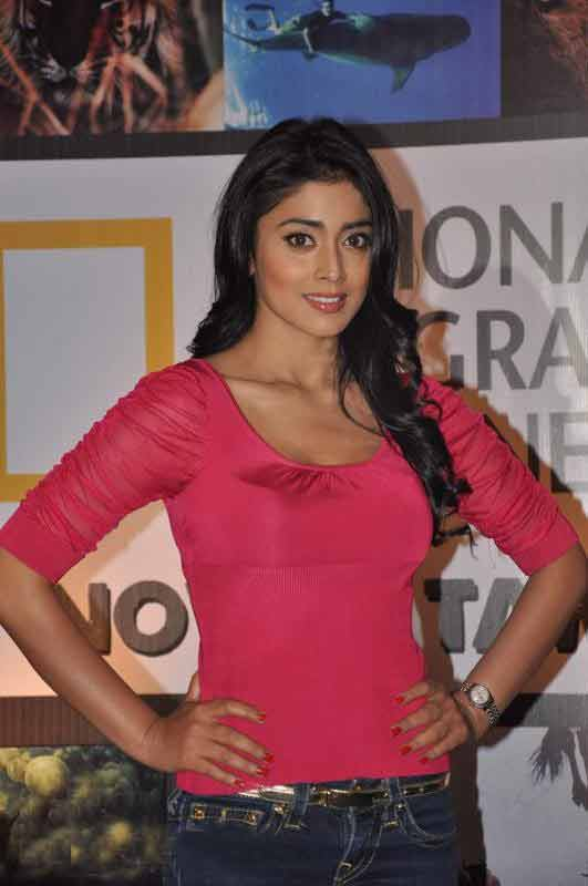 shriya saran hot stills, shriya hot stills, shriya hot images, shriya spicy pics, shriya spicy images, shriya hot photos, shriya hot gallery