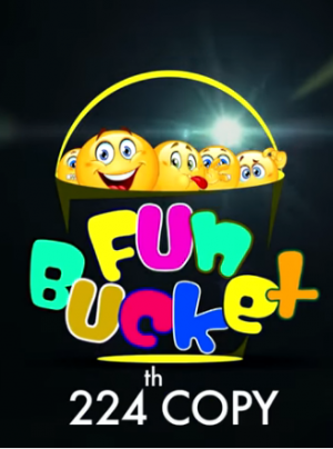 Fun Bucket 224th Episode Funny Videos