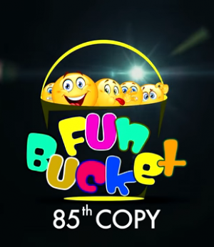 Fun Bucket 85th Episode Funny Videos