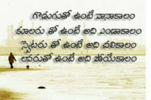 telugu comedy quotes funny telugu quotes funny love