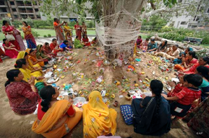 Information about hinduism facts soubhagya pradayini vata savithri vratham, vat savitri puja, vat savitri pooja, savitri puja vrat katha