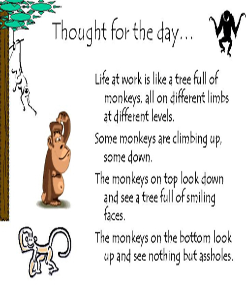 Thought For The Day Quotes: Funny Love Quotes And Sayings