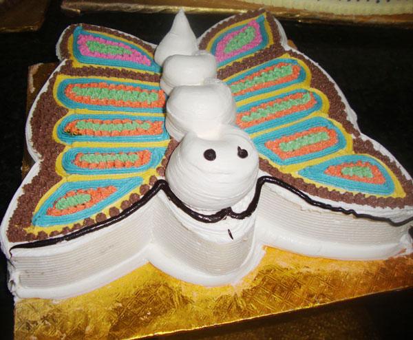 Vijayawada-Special-Cakes Butter-Cream-Cakes Butterfly ...