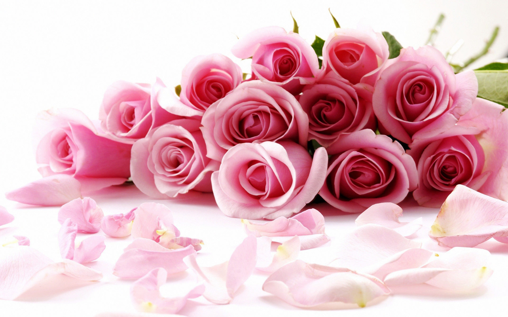 Chennai Special Flowers Bouquets Pink Roses Bunch Of 12 Pink
