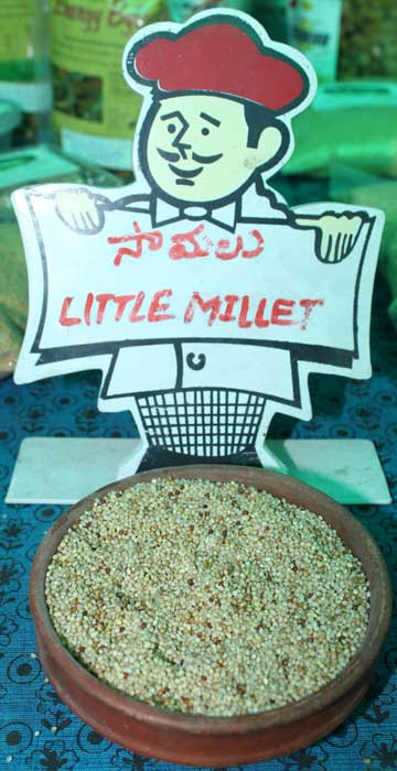 Little Millet Samalu 1kg Little Millet Samalu 1kg