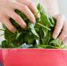 Health Spinach